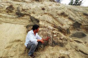 Lập kế hoạch bảo vệ di tích mới phát hiện ở Quảng Nam