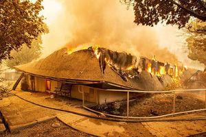 Ám ảnh California trước và sau vụ cháy rừng khủng khiếp nhất lịch sử