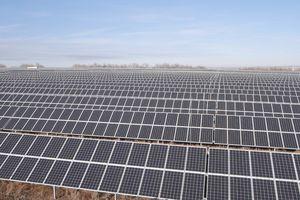 Nga khánh thành 2 nhà máy điện mặt trời lớn nhất nước