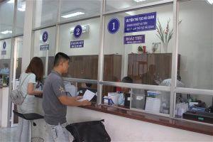 Doanh nghiệp FDI xuất khẩu gạo cần giấy phép gì?