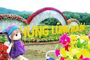Thung lũng hoa Yên Tử - điểm đến mới ở Quảng Ninh làm nức lòng du khách