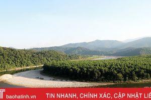Vì mục tiêu phát triển rừng bền vững
