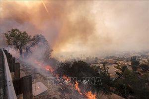 Hơn 630 người mất tích, 63 người thiệt mạng trong thảm họa cháy rừng California
