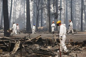 Tổng thống D.Trump sẽ thị sát vùng 'thảm họa' cháy rừng tại California