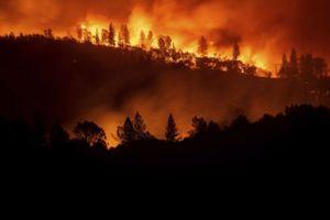 Hơn 600 người mất tích trong vụ cháy rừng thảm họa tại California