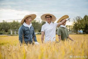 'Nhĩ Khang' Châu Kiệt hạnh phúc với cuộc sống làm nông dân trồng lúa