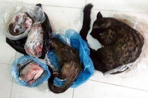 Chủ tịch Hội chữ thập đỏ lên mạng xã hội rao bán động vật hoang dã