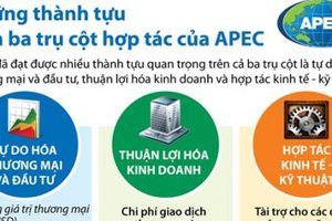 Những thành tựu trên ba trụ cột hợp tác của APEC