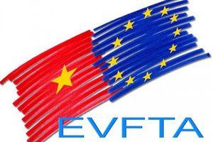 Tăng tốc và kỳ vọng vào EVFTA