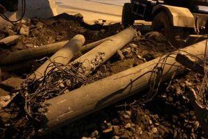 Điện lực Thanh Xuân xử lý nghiêm hành vi chặt cột điện ở phường Hạ Đình