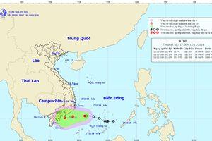 Chủ động ứng phó với bão số 8 và mưa lớn diện rộng