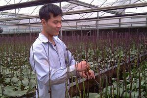 Hà Nội phấn đấu hoàn thành trên 80% số xã đạt chuẩn nông thôn mới