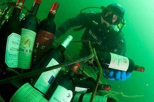 'Hầm rượu' khổng lồ dưới đáy biển ở thị trấn Saint-Malo