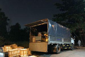 TP.HCM: Quản lý thị trường bắt xe tải chở 3 tấn chim cút đông lạnh bốc mùi