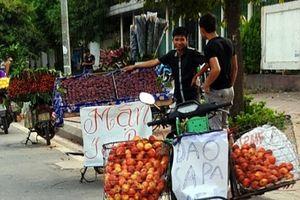 Nông sản, thủy sản mập mờ xuất xứ 'đội lốt' hàng Việt sẽ hết đất sống?