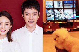 Triệu Lệ Dĩnh - Phùng Thiệu Phong tiết lộ cuộc sống ngọt ngào khi 'góp gạo thổi cơm chung'