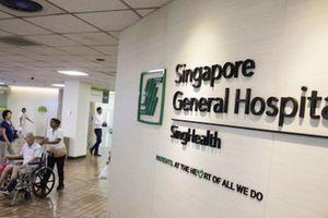 Vì sao người Việt phải chi hàng tỉ đô la ra nước ngoài chữa bệnh?