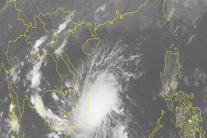 TPHCM ra công văn khẩn ứng phó với bão Toraji