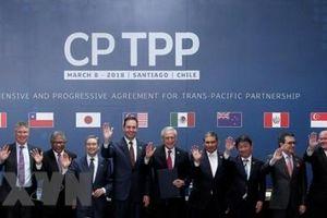 CTTPP – không chỉ là cơ hội