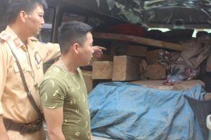 Bắc Giang: Bắt giữ 'xe 2 biển' chở trên 1,4m3 gỗ thông xẻ