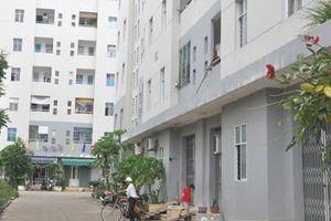 Đà Nẵng 495 cán bộ công chức có nhà, đất vẫn thuê chung cư nhà nước