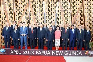 Dấu ấn Việt Nam tại Hội nghị Cấp cao APEC lần thứ 26