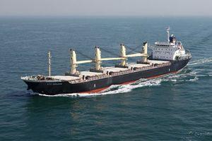 Thua lỗ, công ty vận tải biển rao bán cổ phần giá 1.200 đồng