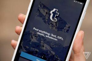 Ứng dụng chia sẻ ảnh Tumblr bất ngờ bị xóa khỏi App Store