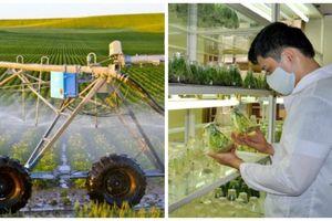 Nông nghiệp ứng dụng công nghệ cao nâng cao chất lượng và an toàn