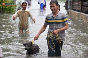 Nha Trang ngập nặng sau mưa lớn hàng chục nhà sập 19 người thương vong