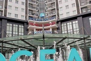 2 lãnh đạo bị phản đối của tập đoàn Đại Dương cấp tập mua gom cổ phiếu