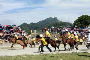 Hà Nội muốn đầu tư 500 triệu USD làm Trường đua ngựa Sóc Sơn