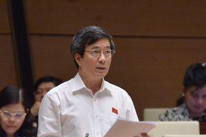Đại biểu Quốc hội đề nghị sớm sửa đổi thuế tiêu thụ đặc biệt với ô tô trong nước