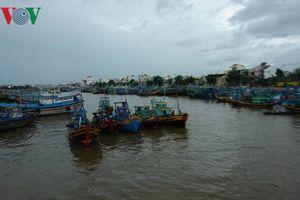 Hơn 5.600 tàu cá Bình Thuận vào nơi neo đậu tránh bão số 8 an toàn