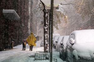 Mùa Đông băng giá đã tới ở nhiều nơi trên thế giới