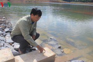 Quảng Bình đối mặt với trận hạn lịch sử trong hơn 40 năm qua