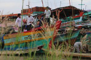 Hơn 5.600 tàu thuyền ở Bình Thuận neo đậu tránh bão số 8 an toàn