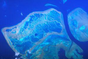 Choáng ngợp rạn san hô lớn nhất thế giới nhìn từ trên cao