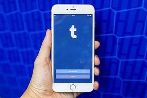 Ứng dụng mạng xã hội Tumblr bị gỡ khỏi App Store