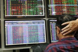 Đại gia gom mua, cổ phiếu tăng kịch trần