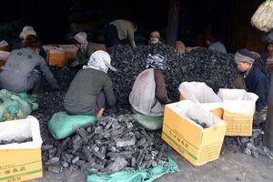 Công ty Tùng Lâm được nhập khẩu than củi