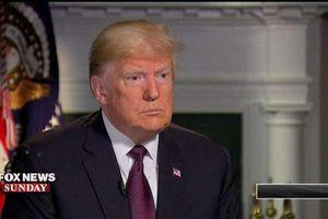 Ông Trump tự đánh giá bản thân xuất sắc trong cương vị Tổng thống