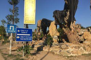 Công ty Thảo Nguyên Xanh: GĐ đánh người tại trụ sở, cty xây dựng trên đất bị thu hồi?