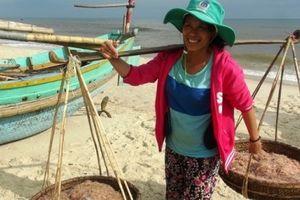 Quảng Bình: Ngư dân trúng đậm mùa ruốc biển và cá trích