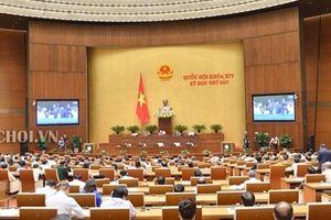 Quốc hội thông qua Luật Chăn nuôi, có hiệu lực từ 1-1-2020