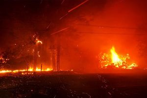 Những đám cháy rừng khủng khiếp nhất trong lịch sử thế giới