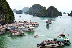 Thí điểm điều hành tàu ghép khách tham quan vịnh Hạ Long