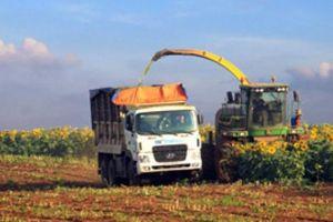 Đất và vốn 'cản đường' doanh nghiệp làm nông