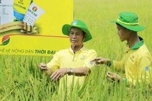 Đạm Cà Mau nỗ lực vì sự phát triển bền vững của nông nghiệp Việt