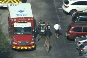 27 người nhập viện sau tiếp xúc chất lạ ở trường học Mỹ